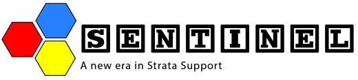 Logo_Sentinel Support-01